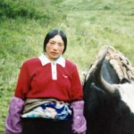 """The Testimonies Left Behind By Tibetan Self-Immolators"" By Woeser"