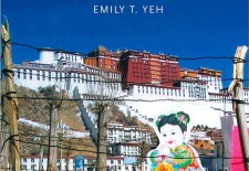 """Taming Tibet: Landscape Transformation and the Gift of Chinese Development"" By Emily T Yeh"