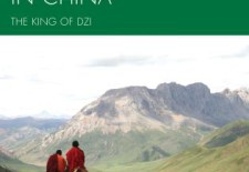 """Tibetan Environmentalists in China: The King of Dzi"" By Liu Jianqiang, Translated by Ian Rowen; Cyrus K. and Emily T. Yeh"