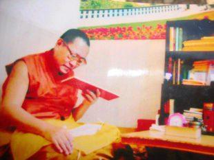 唯色RFA博客:2015年七月日志——丹增德勒仁波切之死