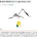 """Prejudiced Views Towards the 'Tibetan Hui' of Hualong County"""