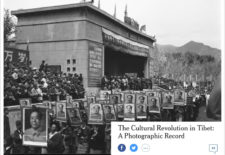 """The Cultural Revolution Has By No Means Ended"" An Interview That Made Me Continue to Think About the Cultural Revolution in Tibet Part 1 By Woeser"