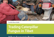 """Trading Caterpillar Fungus in Tibet: When Economic Boom Hits Rural Area"" By Emilia Roza Sulek"